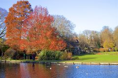 Parques en otoño, Inglaterra de Londres imagen de archivo