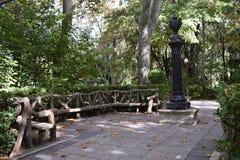 Parques en un bosque Imagen de archivo libre de regalías