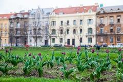 Parques hermosos y arquitectura de la ciudad más baja en la ciudad de Zagreb foto de archivo