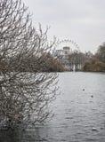 Parques Londres el ojo de Londres - en un día melancólico imágenes de archivo libres de regalías