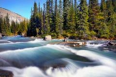 Parques nacionales canadienses en Alberta foto de archivo