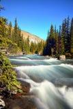 Parques nacionales canadienses en Alberta fotos de archivo