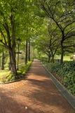 Parques públicos de enlatado de la colina de la fortaleza Fotografía de archivo libre de regalías