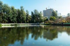 Parques verdes del lago foto de archivo
