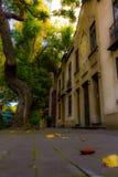 Parquesy calles Engels La ciudad DE Mexico Royalty-vrije Stock Afbeeldingen