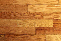 Parquet light walnut. With beautiful colors Royalty Free Stock Images