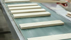 Parquet production. Industrial factory. stock footage