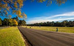 Parramatta parkerar Arkivbild