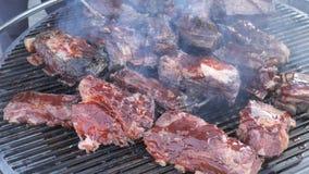 Parrilla clásica americana, friendo la carne fresca, barbacoa del pollo, cerdo, costillas, kebab, hamburguesa, Bbq, barbacoa, Jos almacen de video