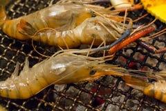 Parrilla de la barbacoa del camarón fotografía de archivo libre de regalías