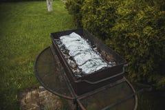 Parrilla de la barbacoa en qué pescado en hoja se cuece fotos de archivo libres de regalías