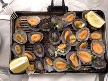 Parrilla de los mariscos Imagen de archivo