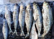 Parrilla de los pescados Foto de archivo libre de regalías