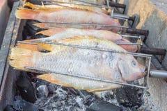 Parrilla de los pescados en la estufa Foto de archivo libre de regalías