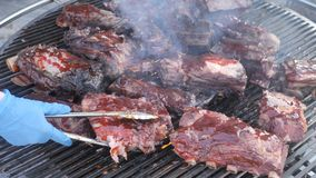 Parrilla, friendo la carne fresca, barbacoa del pollo, costillas asadas a la parrilla grasas naturales de las costillas, kebab, h almacen de metraje de vídeo