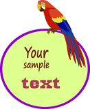 Parrot ара с полем для вашего текста Стоковое фото RF