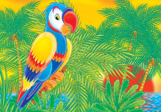 Parrot 002. Illustration Royalty Free Stock Image