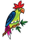 Parrot Royalty Free Stock Photos