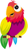 Parrot. Vectors represents a color illustration of a parrot on a branch stock illustration