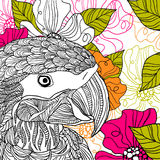 Parrot. Vector summer background with ornament and parrot Stock Image