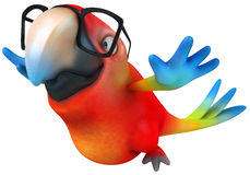 Parrot. Fun parrot, 3d generated picture Royalty Free Stock Photo