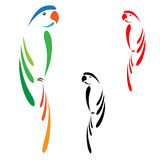 Parrot. Beautiful colorful parrot pattern on a white background Stock Images