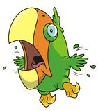 Parrot. Caricature of fearful parrot in vector Stock Images