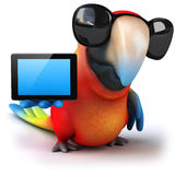 Parrot Stock Images