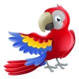 Parrot Animal Cartoon Character Stock Photography