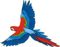 Parrot ara Stock Photo