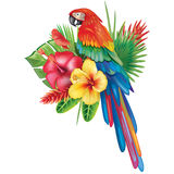 Parrot Ara with tropical flowers royalty free illustration