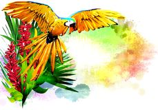 Parrot on the background of multicolored paint splashes. stock images