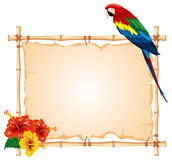Parrot and bamboo frame Royalty Free Stock Photos