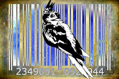 Parrot barcode animal design art idea Stock Images