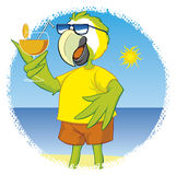 Parrot in beach Royalty Free Stock Photography
