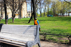 Parrot on the bench. In the park in the city Stock Photos