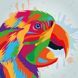 Parrot bird icon. Animal and art design. Vector graphic Royalty Free Stock Photography