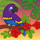 Parrot on branch with flowers Stock Photos