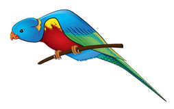 Parrot on a branch. Parrot macaw. eps10 vector illustration Stock Photo