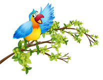 A parrot on a branch of a tree. Illustration of a parrot on a branch of a tree on a white background Stock Images