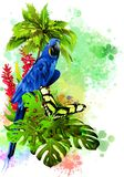 Parrot and butterfly on the background of multicolored paint splashes. stock image