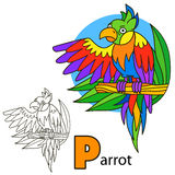 Parrot. Coloring book page Stock Photo