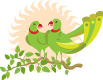 Parrot Couple on tree Royalty Free Stock Photo