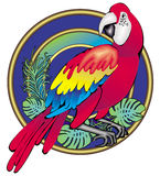 Parrot. Decorative illustration of parrot in white background Stock Images