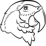 Parrot. Eps 10 illustration Design vector illustration