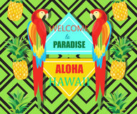 Parrot, Exotic Flowers and Pineapple. Black Stripes. Vector geometric illustration. Tropical Summer Poster. Stock Photos