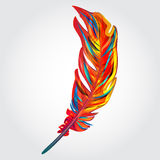 Parrot feather Stock Photo