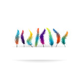 Parrot feather background Royalty Free Stock Photos