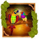 Parrot and finch. Sitting on a branch at sunset Stock Images