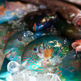 Parrot fish in cold ice on market. Fresh Parrot fish in cold ice on asian seafood market stock photography